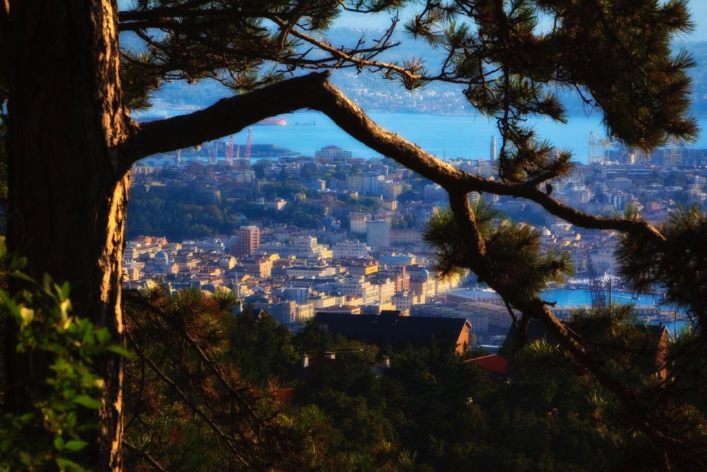 Panorama (foto G. Mussardo)